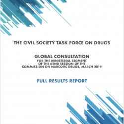 CSTF Global Consultation – Report – Vienna NGO Committee on